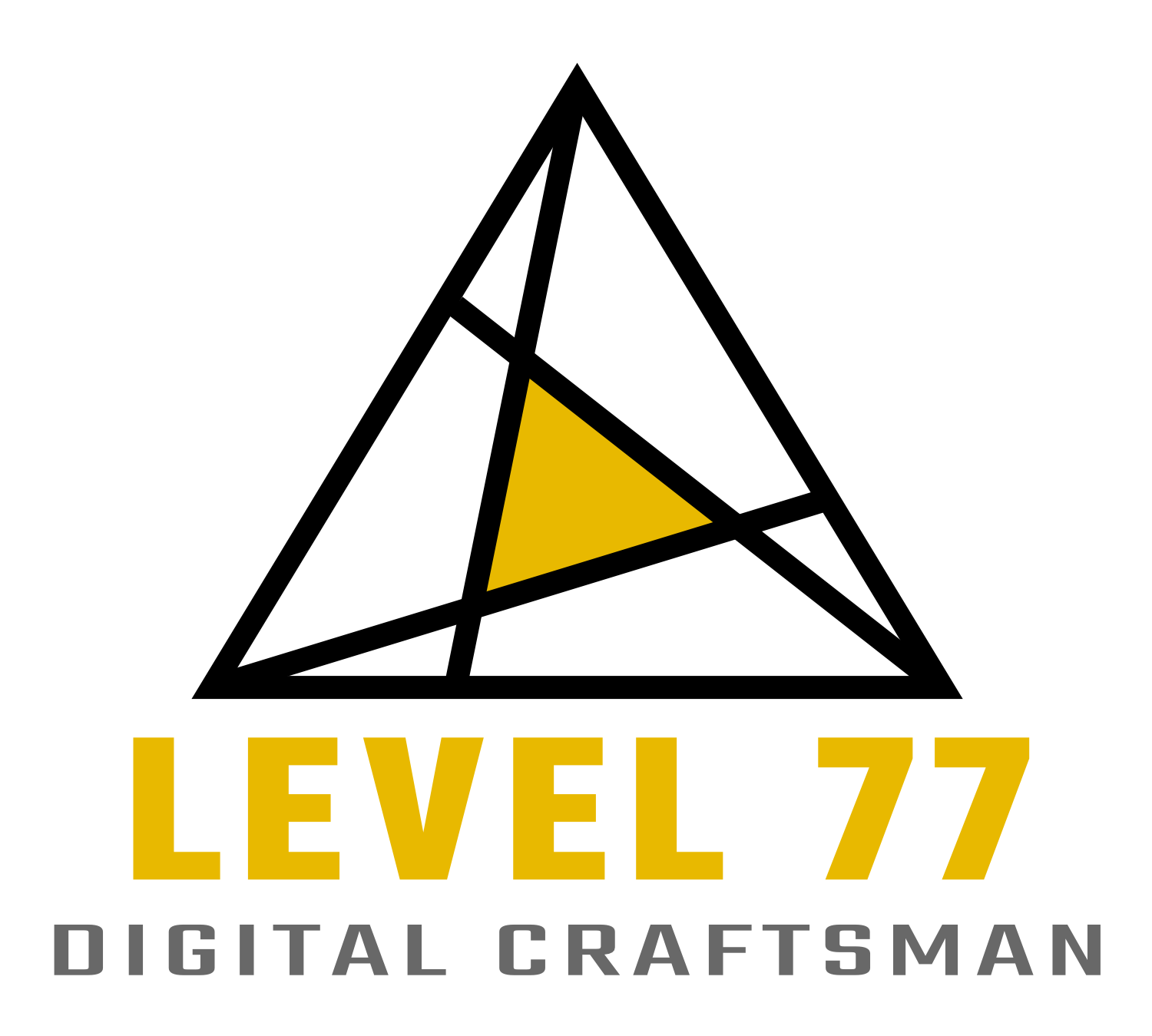 cropped-logo_level77_complet.png